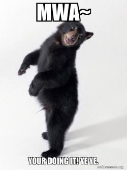 dancing bear U~U