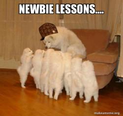 """Newbie response......""""pant, pant, pant,.....War! Yip, Yip, Yip, Nooooooo"""""""