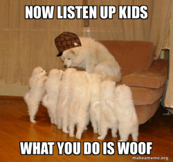 Scumbag Storytelling Dog
