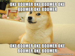 OK BOOMER Doge