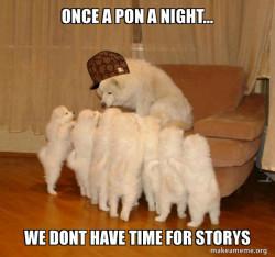 Scumbag Storytelling Dog