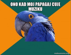kurva papagaj