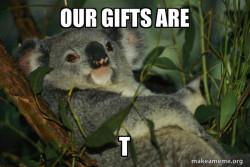 Koala T Gifts