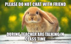 Regretful Rabbit Says
