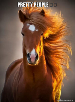 Horse!!!!!!!!!-by pavni