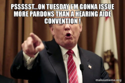 Donald Trump Says Pardon?