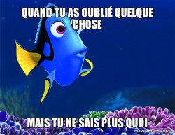 Dory from Nemo  (5 second memory)