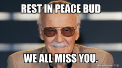 Stan lee, We Miss You. Not A Meme