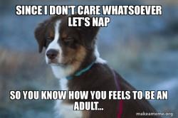Unsure Doggo