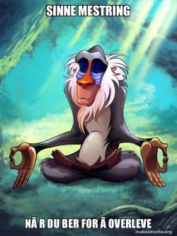 Rafiki Meditating#Lol