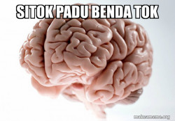 Scumbag Brain