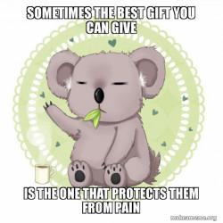 Koala Zen