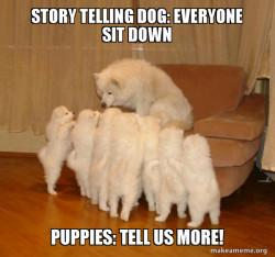 Storytelling Dog .too cute.