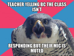 teacher with their mic muted