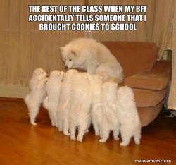 Elementary school times