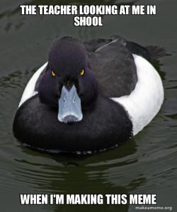 Revenge Duck ( Angry Advice Duck )