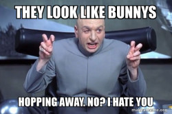 They Look Like Bunnys Hopping Away No I Hate You Quote Unquote