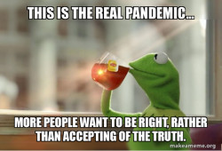 Kermit Talking Pandemics