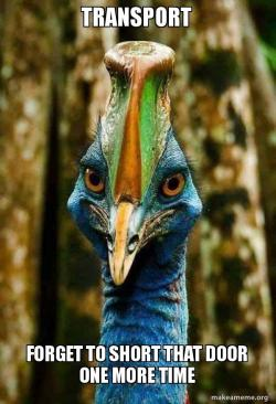 The Casowary