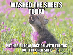 Several day argument with the wife.