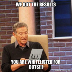 You are Whitelisted for DOTS!!!