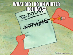 What did I do on winter holidays?