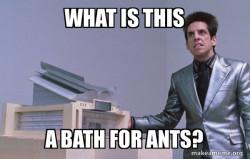 Bath for Ants (Zoolander)