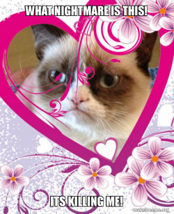 Grumpy cat nightmare