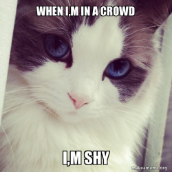 When I,m in a crowd
