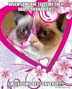 Grumpy Cat best day ever