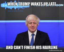 Trump hair oof