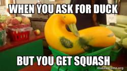Gourd Advice Mallard
