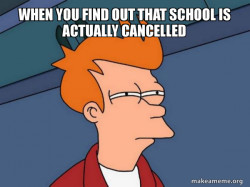 School Cancelled Fry