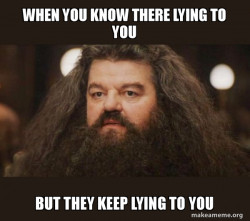 Hagrid - I should not have said that