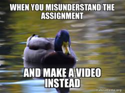 Zen Advice Mallard
