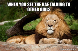 Contemplative Lion
