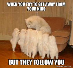 They follow you