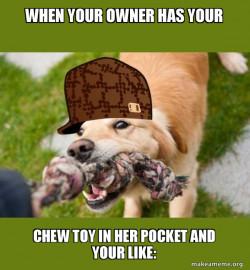 EAT DOGGY