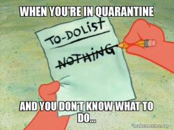 Aye oh Quarantine check