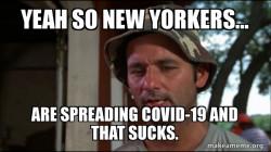 Coronavirus ( COVID-19 ) new york