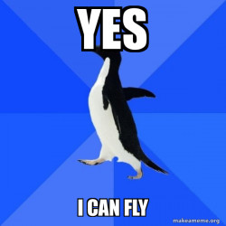 a flying penguin