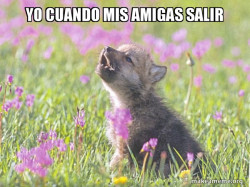 Baby Insanity Wolf