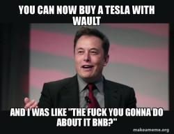 Elon Musk Wault