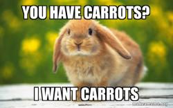 Regretful Rabbit