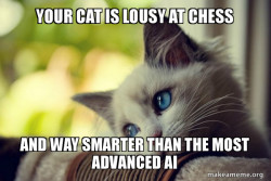 Your cat is lousy at chess