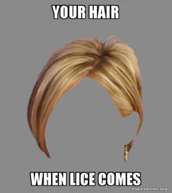 lice hair