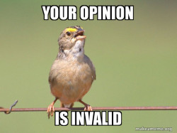 Common Opinion Sparrow