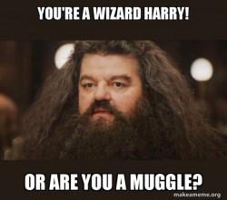 Hagrid!!!