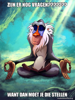 Rafiki Meditating - Lion King