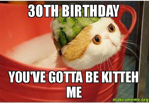 Funny Birthday Meme Reddit : Th birthday you ve gotta be kitteh me make a meme